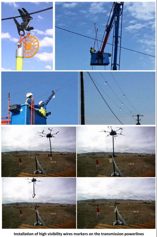 Elaboration of measures for wire marking and bird protection (A1 ...